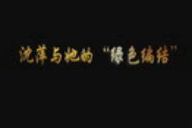 青浦区社区教育纪实1:《沈萍与她的绿色编结》